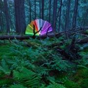 daniel-baltat-light-painting-in-padure